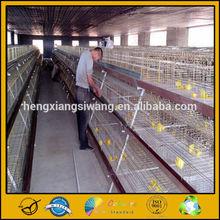 Poultry Farm Equipment Multi-tier Layer Chicken Cage