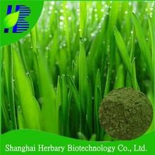 Natural health drinking powder wheat grass juice powder
