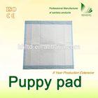 PE film competitive perfact pet training pad