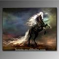 Handmade modern horse oil paintings for home art decoration