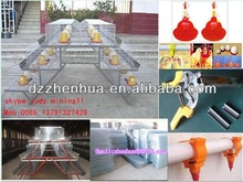 decorative bird cages wholesale/poultry farm house design/poultry farming equipment/ cage with high quality