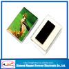 Japanese 2014 high quality resin 3d fridge magnets