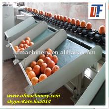 factory price fruit grading machine