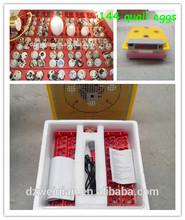 Codorniz ( 144 huevos )