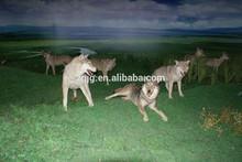 Hotsale animal theme park animatronic wolf model