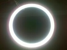 Manufacturers supply exported to Japan T9 LED ring lamp 170MM 9W can replace traditional 15W circular lamp