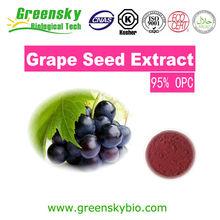 BNP Sells Grape Seed P.E--OPC&Polyphenols-grape seed plant extract powder