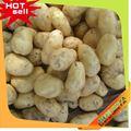 Top10 caliente de la venta de China frozen patatas fritas
