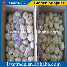 china white garlic seller (B)
