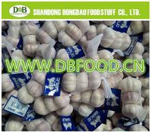 Factory supply New season High quality Fresh Garlic