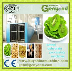 low price sterilizer belt stainless steel microwave tunnel lotus dehydrator