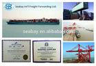 Shipping container Guangdong /Hongkong to Costa Rica