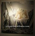 Handmade famous animal selvagem pintura em tela, Pintura a óleo