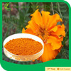 compesitive price lutein extract/marigold extract powder lutein/tagetes erecta extract powder