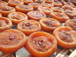 organic dried persimmon all types of italian dried fruits