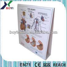 2014 newest glaucoma PVC plastic medical bookshelf card