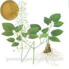 Yellow brown Epimedium herbal Extract, Food/Pharmaceutical grade Epimedium Extract, Powder Epimedium Extract