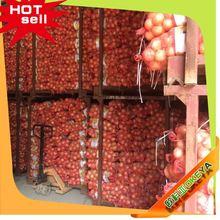 2014 Wholesale Latest vegetable production