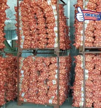Latest Factory Supply!! indian red onion buyer