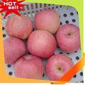 De la fruta profesional proveedor citrus Fruit lista de precios
