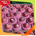 profesional proveedor de fruta de la fruta de diseño de la tela