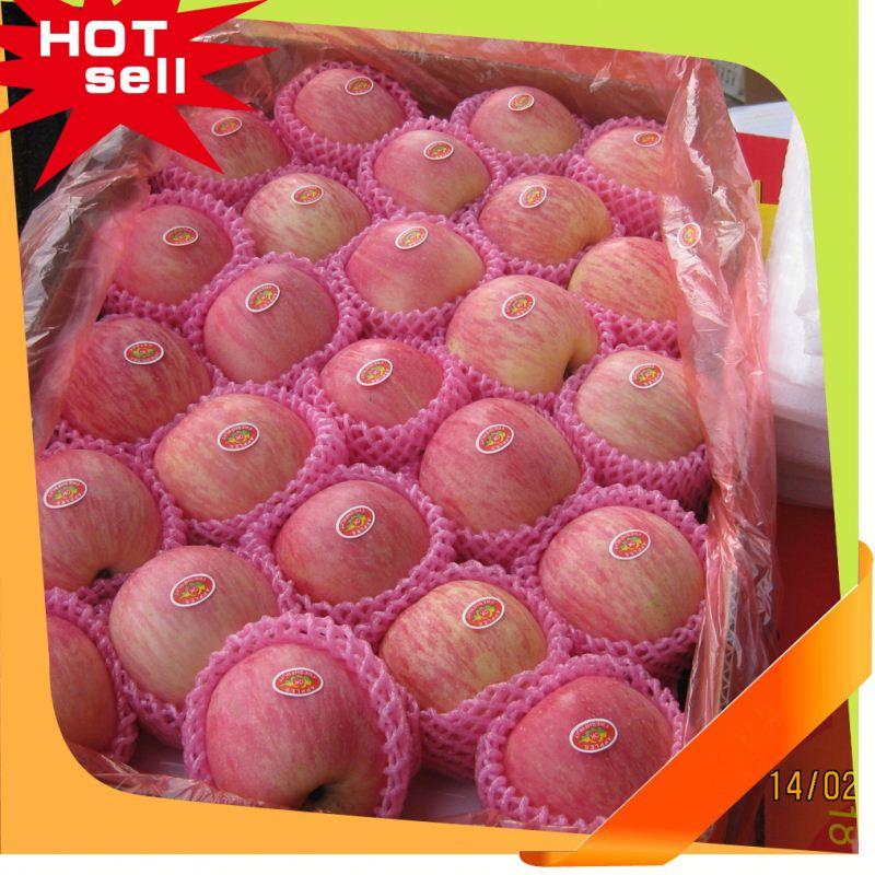 Professional Fruit Supplier import fruit fresh 2014