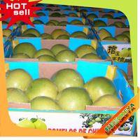 Professional Fruit Supplier slimming fruit 2014