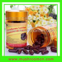 Regulation of Blood System Function Ganoderma Lucidum Polysaccharide Powder