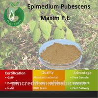 Epimedium Sagittatum Powder/Epimedium Sagittatum P.E/Epimedium Pubescens Maxim P.E