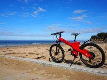 Sport electric bike with 250W brushless gear hub motor,two seat electric bike