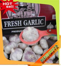 Good Taste Cheap Prices!! china farm japanese fresh white garlic