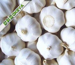Good Taste Cheap Prices!! bulk pickled garlic