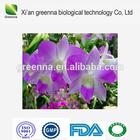 Dendrobium Extract dendrobine dendrobium nobile extract 10:1CAS: 2115-91-5