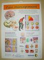 custom made 3d geprägte medizinische poster