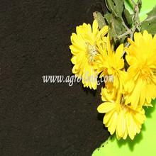 Humic Acid Regulator of alkaline soil 95% potassium humate