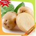 Nueva cosecha! Barato precios congelados de fábrica de la patata
