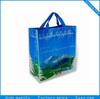 fashional pp woven laminated shopping bag