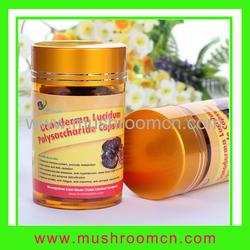 supply chaga mushroom extract polysaccharidepowder,raw material chaga mushroom extractpolysaccharide