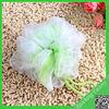 Wholesale colorful cleaning sponge/high-temperature silicone foam sponge