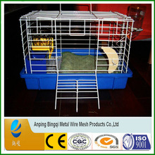 Bingqi brand wire pet bird cage / Manufacurer pet cage bird cages for sale