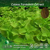 10% Forskolin Powder Extract ( Coleus Forskohlii Extract) Tested By HPLC