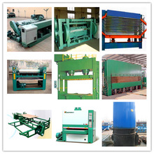 plywood line machine/automatic plywood line/ automatic wood plywood machine line