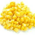 vegetales lista de precios de los alimentos producto de grano de maíz dulce