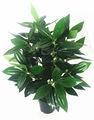 Plantas artificiales importadores de hibisco