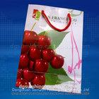 Fruit packaging bags cherries packing bag with handle
