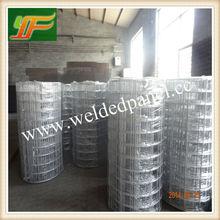 A buon mercato coniglio gabbia/conigli saldati gabbia di rete metallica( anping yunfei fabbrica)