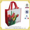 Promotion Non Woven Gravure Printing Bag