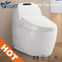Intelligent toilet electronic odor eliminator