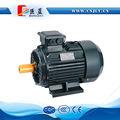 TrÊs- fase de indução motor elétrico da bomba de água