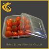 disposable plastic salad container wholesale